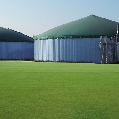 Biogas Da Biomasse Agricole